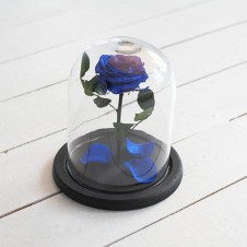 FOREVER BLUE ROSE IN GLASS DOME