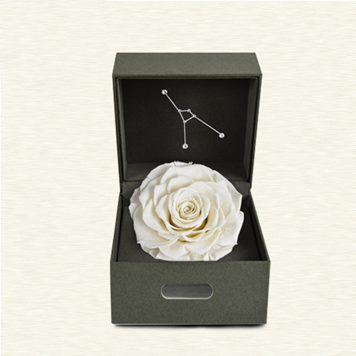 FOREVER WHITE ROSE IN A BOX