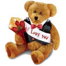 Customizable Message Bear with Red Roses in a Bouquet