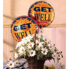 Get well Mylar Balloon with White Daisies in a  Basket