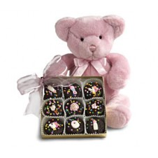 Pink Bear with Cookies