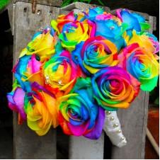 Rainbow Rose 1 Dozen