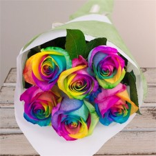 Rainbow Rose 6pcs