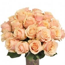 Promo Light Peach in a Bouquet