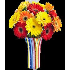 12 Colored Gerbera in a Bouquet