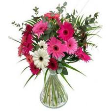 12 Mixed Gerbera in a Bouquet