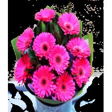 12 Pink Gerberas in a Bouquet