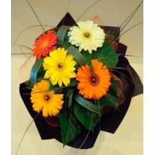 5 Assorted Gerberas in a Bouquet