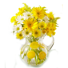 6 Yellow Gerbera in a Bouquet