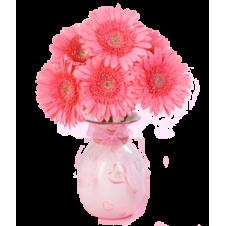 6pcs. Light Pink Gerberas in a Bouquet