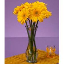 6pcs. Yellow Gerberas in a Bouquet