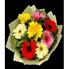 8pcs. Mixed Gerberas in a Bouquet