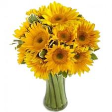 Endless Summer Sunflower -12 Stems in a Bouquet