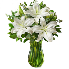 All White Lily in a Vase