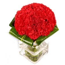 20 Pcs Red Carnations in a Vase