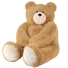 Teddy Bear 2 to 4feet