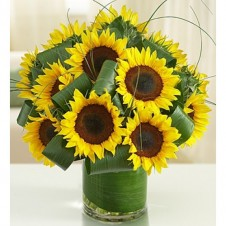 Sun-Sational Sunflowers-12 Stems in a Bouquet