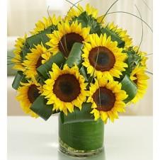 Sun-Sational Sunflowers-12 Stems in a Bouquet
