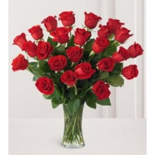 24 Long Stem Premium Rose Vase