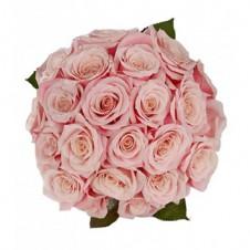 24 Pink Rose Bouquet