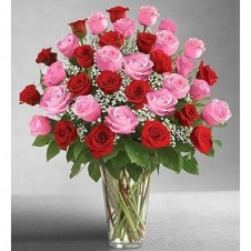 3 Dozen Long Stem Pink and Red Roses in a Buoquet