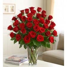 Premium Red Roses in a Vase