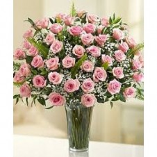 48 Long Stem Light Pink Roses in a Buoquet
