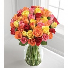 48 Stem Mixed Rose in a Vase