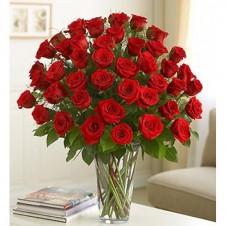 Four Dozen Premium Red Roses in Vase