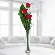 3 Red Roses in a Bouquet