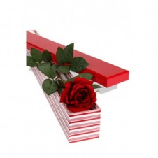 Long Stem Single Rose Presentation Box