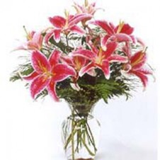 8pcs Star Gazer Lilies in a Vase