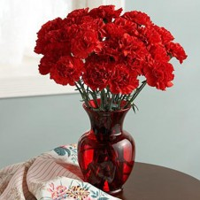1 Dozen Red Carnations in a Vase