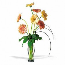 7 Stems Smiley Gerbera in a Vase