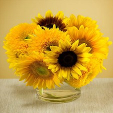 6pcs Sunflower in a Vase