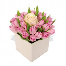 Fresh Pink Dozen Tulips & Peach Rose in a Vase