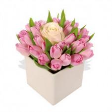 Fresh Pink Dozen Tulips & Peach Rose in a Vase