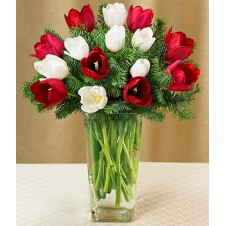 16pcs Mixed Red & White Tulips in a Vase