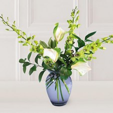 Dendrobium Orchids w/ Anthuriums in a Vase