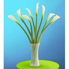 Elegant Calla Lilies in a Vase