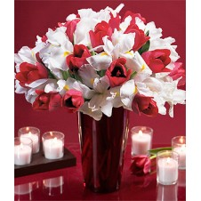 Fresh Red Tulips and White Iris in a Vase