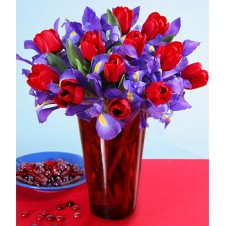 Red Tulips and Purple Iris in a Vase