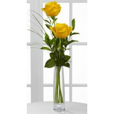 2 stems Holland Yellow Roses Bouquet