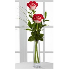 2 stems Holland Two Tone Roses Bouquet