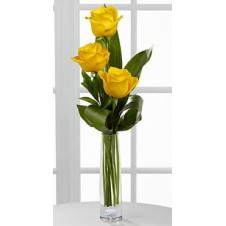 3 stems Holland Yellow Roses Vase