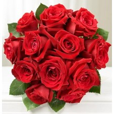 12pcs Imported Red Holland Roses in a Buoquet