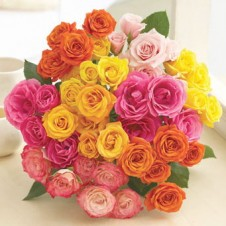 3 dozen Assorted Colored Holland Roses Bouquet