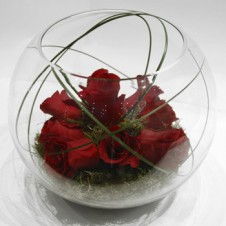 8 pcs Red Holland Roses in a Globe Vase