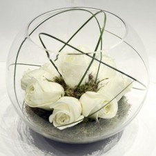 8 pcs Pure White Holland Roses in a Globe Vase
