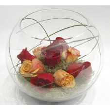 8 pcs Yellow & Red Holland Roses in a Globe Vase